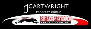 Brisbane Property High Flyer Joins Brisbane Committee