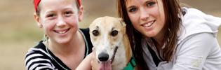 Greyhound Adoption Program Christmas Party On November 16th