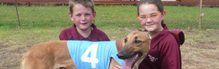 Pentland Primary School's Greyhound Angel Wins Her First Trial