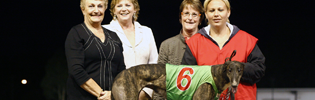Amy Ralph handling Sonador after a Sandown win in December 2008