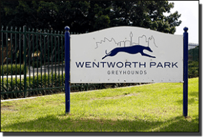 Wednesday's free Wentworth Park multi tips and betting preview