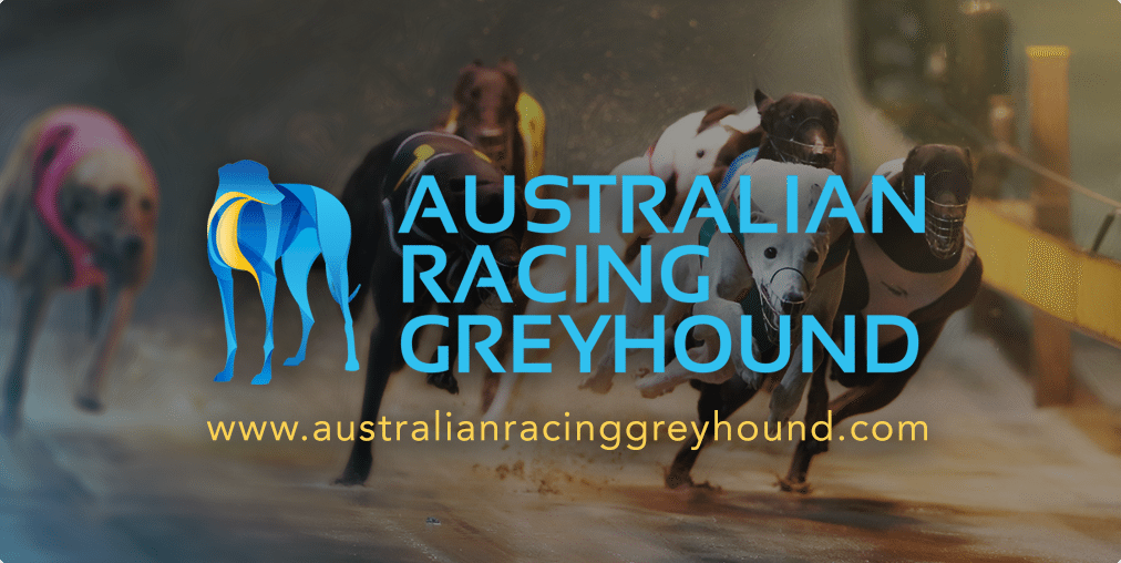 It's Now Or Never For Greyhounds Australasia