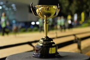 Greyhound racing melbourne cup