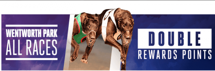 Crownbet greyhounds special