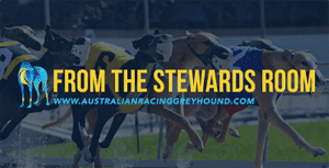 Stewards wrap