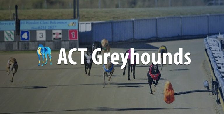 ACT greyhound racing