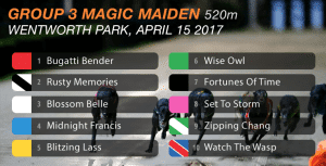 Magic Maiden