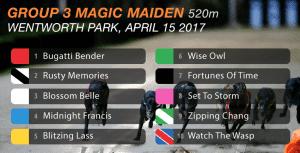 Magic Maiden