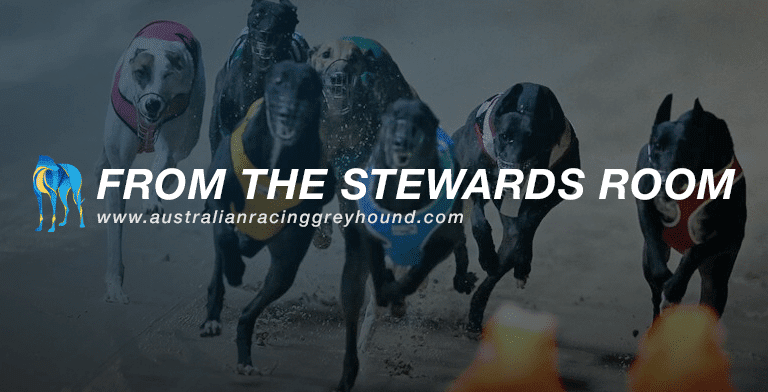 Stewards' wrap