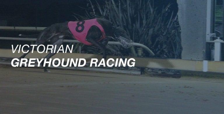 Victorian greyhound racing