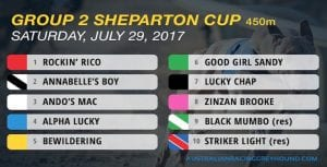 Sandy was a good girl in Group 2 Shepparton Cup heats