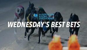 Best Bets Australia Racing News - image 10