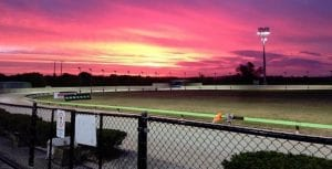 Trainers left frustrated with Richmond getting The Gardens races