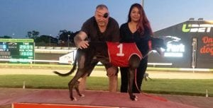 Greyhound racing gives new owner an escape from illness
