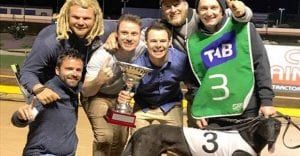 First time owners hit the jackpot in Northern Districts Cup