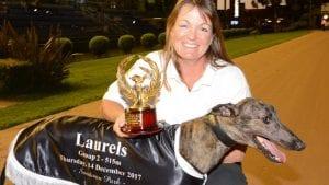 No big plans for Group 2 Laurels Classic winner Dr. Mino