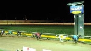Ballarat greyhounds abandoned before first race