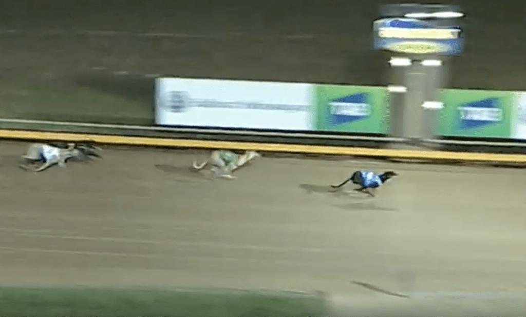 Alina Grand wins at $156