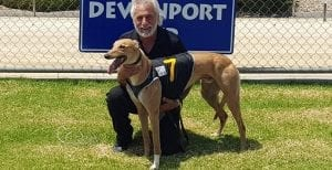 Despacito opens as Devonport Cup favourite after 25.40 heat win