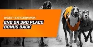 Neds Albion Park