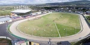 Irish greyhound racing news