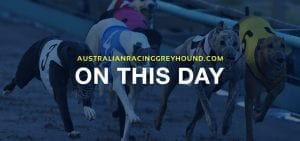 From the archives: Today 28th March in greyhound racing