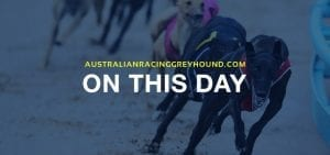 From the archives: This day 29th March in greyhound racing news