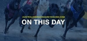 From the archives: This day 31st March in greyhound racing news