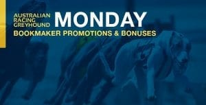Greyhound betting bookmaker promo offers for Monday, 1 March 2021