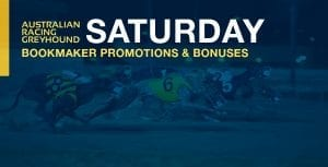 Greyhound betting bookmaker promotion bonus offers for  Saturday, 3 October 2020