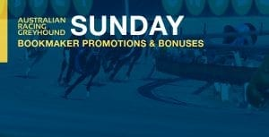 Greyhound betting bookmaker offers for Sunday 30 August 2020