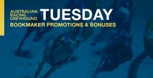 Greyhound betting bookmaker bonus bets for Tuesday 19th January 2021