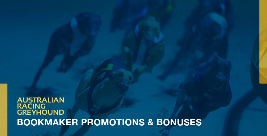 Greyhound Betting Promos