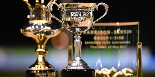 2020 Sandown Cup