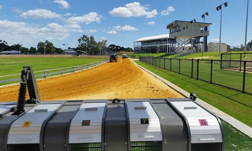 Cannington Greyhound Track