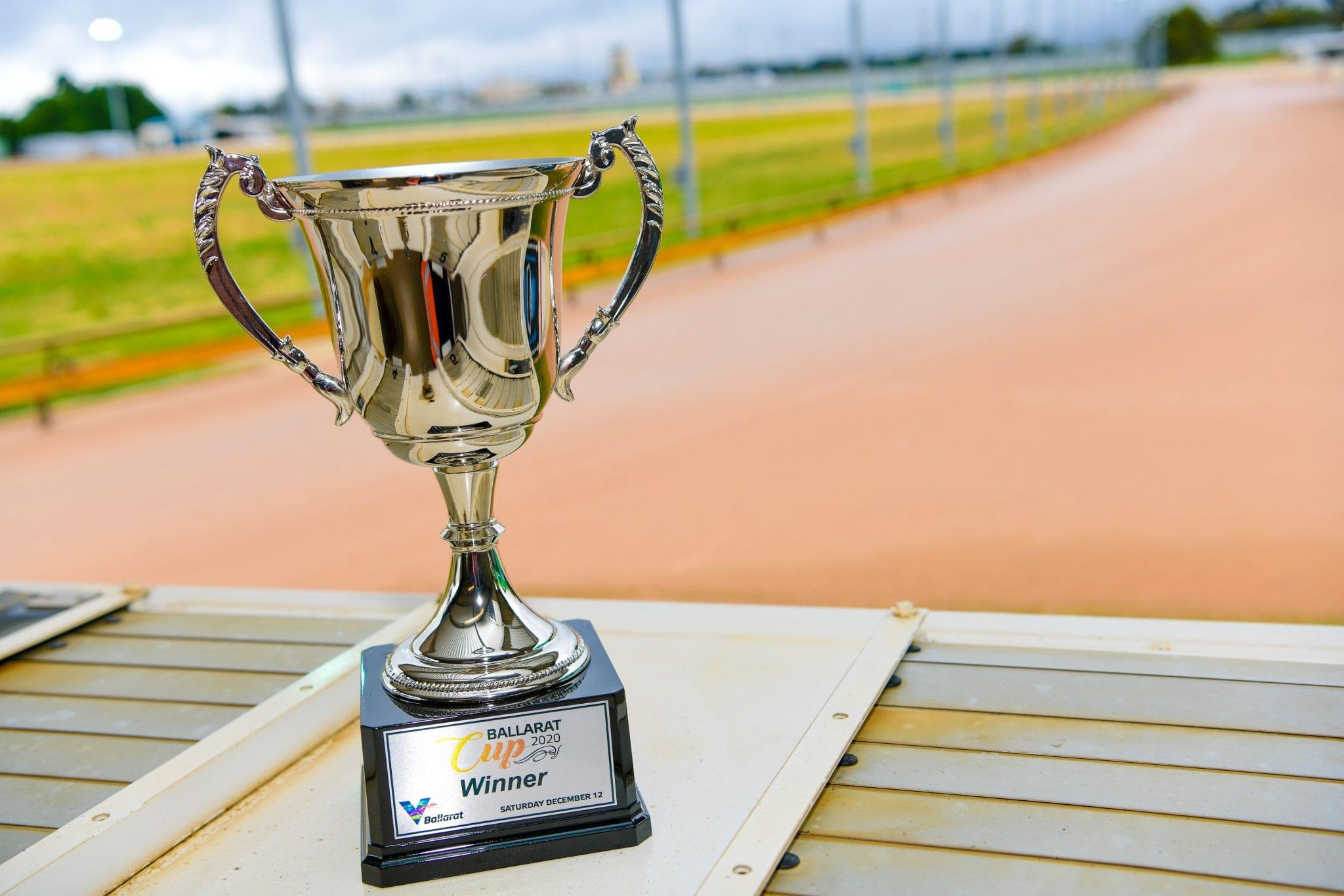 Ballarat Cup greyhounds