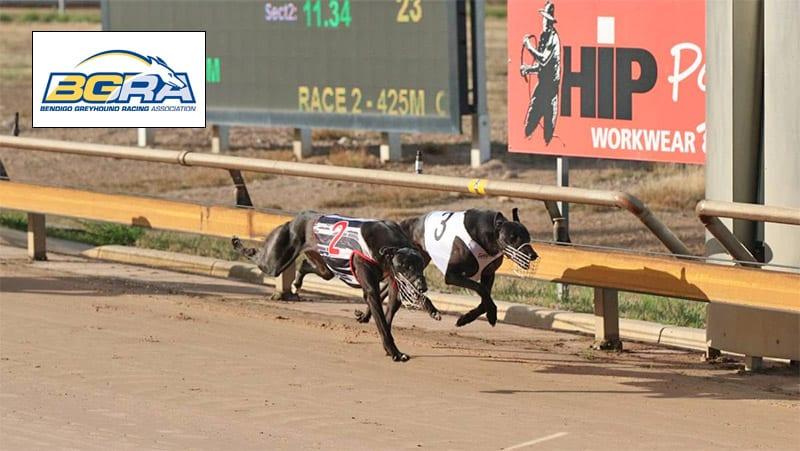 Bendigo Greyhound Racing Association