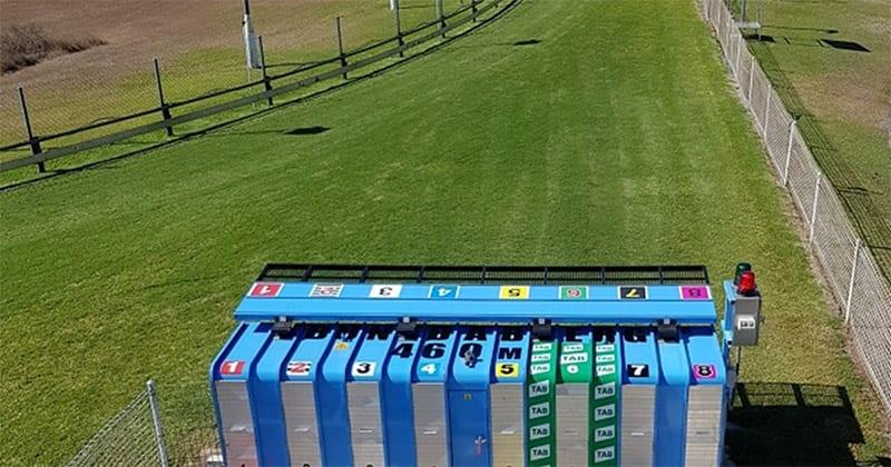 Bundaberg greyhound track