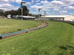 Muswellbrook greyhound club to be gifted TAB status