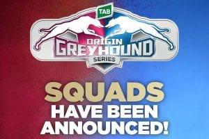 Brisbane State Of Origin Greyhound Series Squads Announced